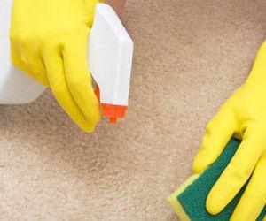 Quitar manchas de aceite de la alfombra